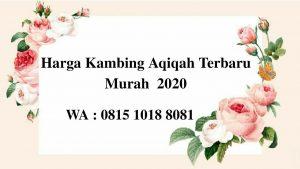 Harga Kambing Aqiqah Terbaru September 2020