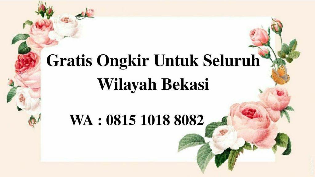 Kambing aqiqah di Bekasi