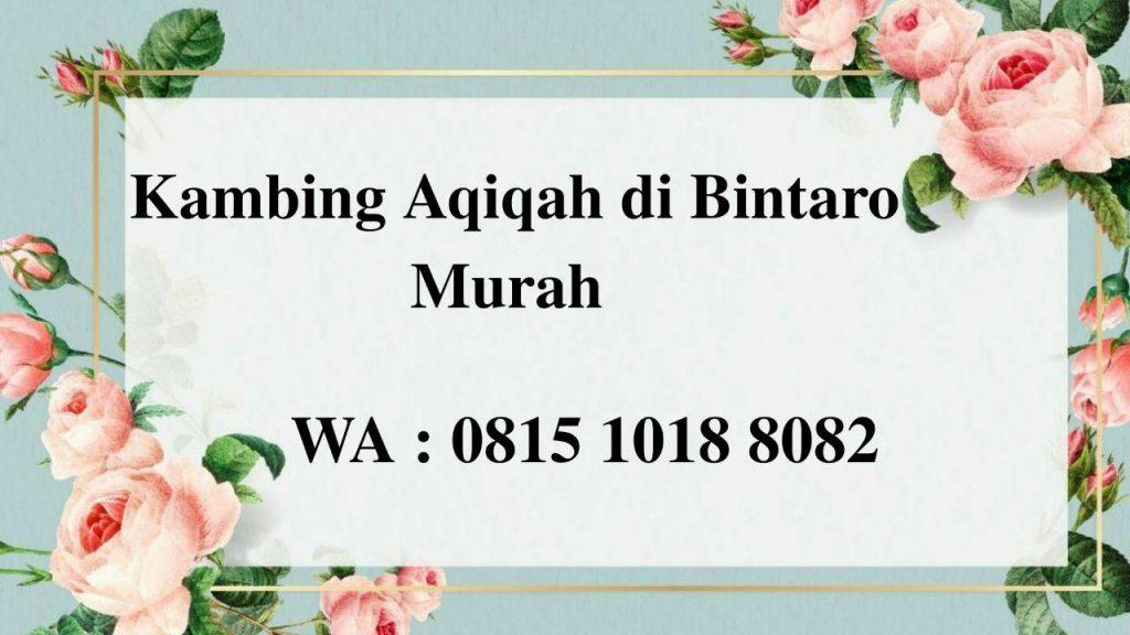 Kambing Aqiqah di Bintaro Jakarta Selatan