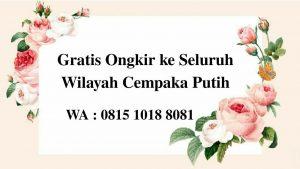 Kambing Aqiqah di Cempaka Putih Jakarta Pusat