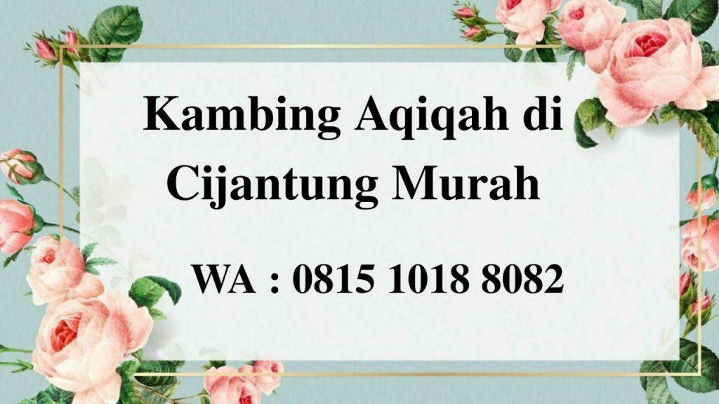 Kambing Aqiqah di Cijantung Jakarta Timur