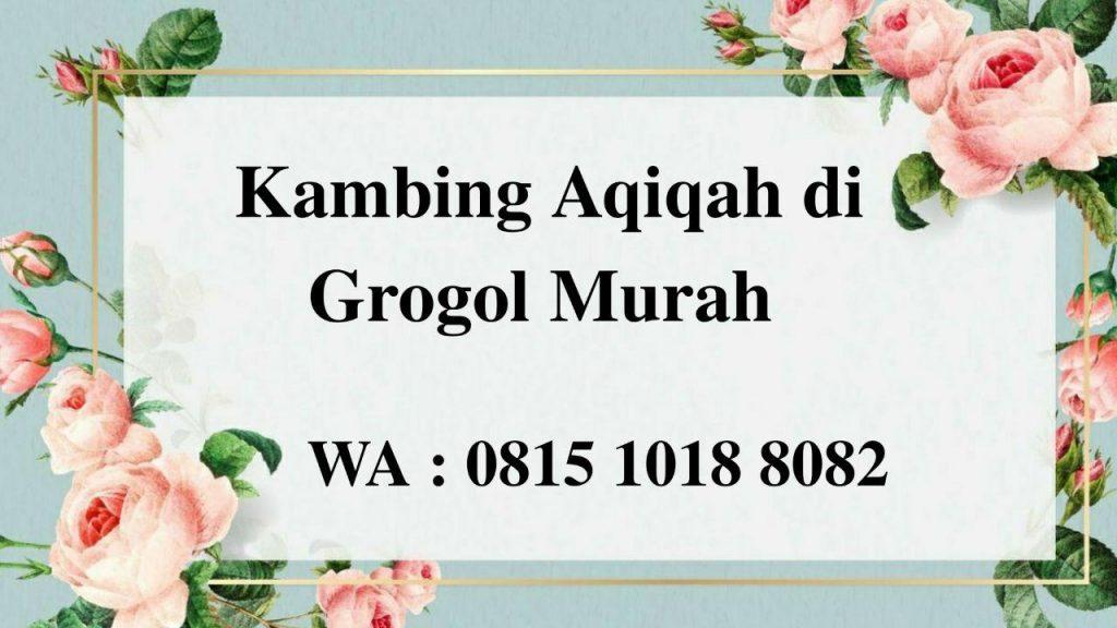 Kambing Aqiqah di Grogol Jakarta Barat