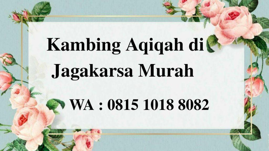 Kambing Aqiqah di Jagakarsa Jakarta Selatan