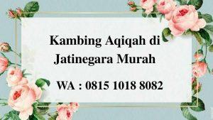 Kambing Aqiqah di Jatinegara Jakarta Timur