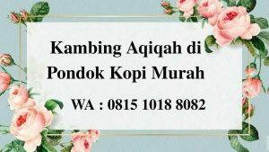 Kambing Aqiqah di Pondok Kopi Jakarta Timur