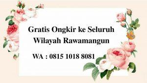 Kambing Aqiqah di Rawamangun Jakarta Timur