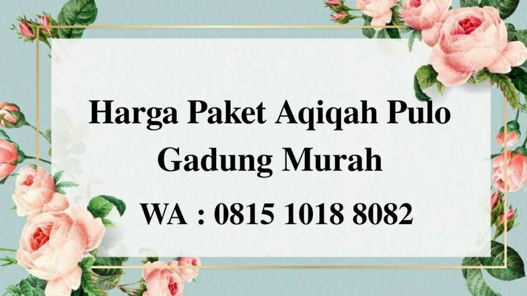 Harga Paket Aqiqah Pulo Gadung Jakarta Timur