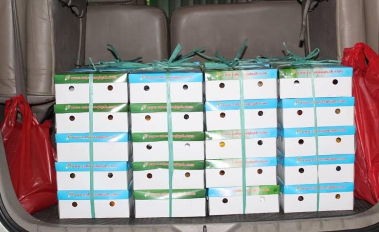 Paket-Nasi-Box